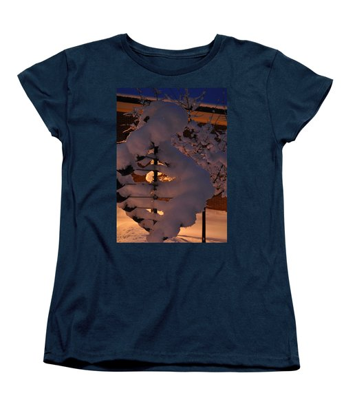 Winter Whirligig Women's T-Shirt (Standard Cut)