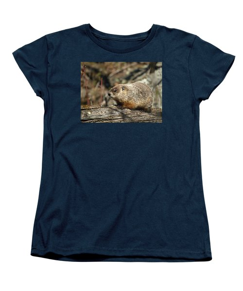 Women's T-Shirt (Standard Cut) featuring the photograph Woodchuck by James Peterson