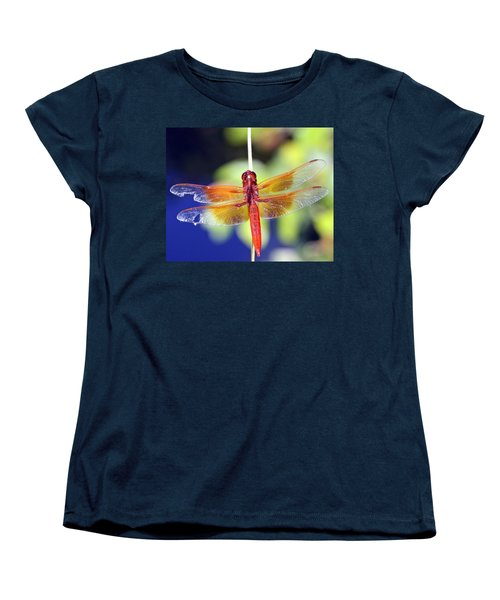 Wounded Warrior Women's T-Shirt (Standard Cut) by Shoal Hollingsworth
