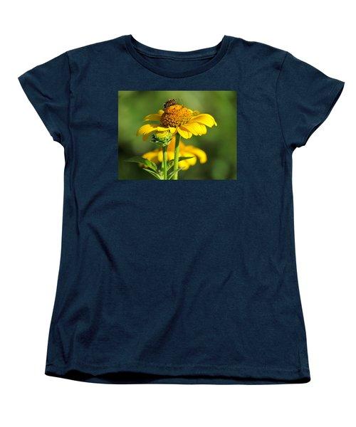 Yellow Daisy Women's T-Shirt (Standard Cut) by David T Wilkinson