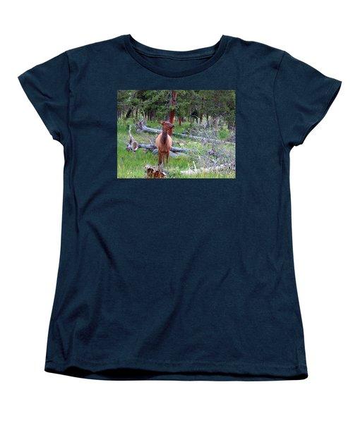 Yellowstone Moments. Doe Women's T-Shirt (Standard Cut) by Ausra Huntington nee Paulauskaite
