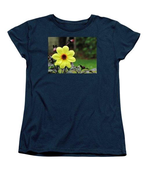 You Are My Sunshine Women's T-Shirt (Standard Cut)