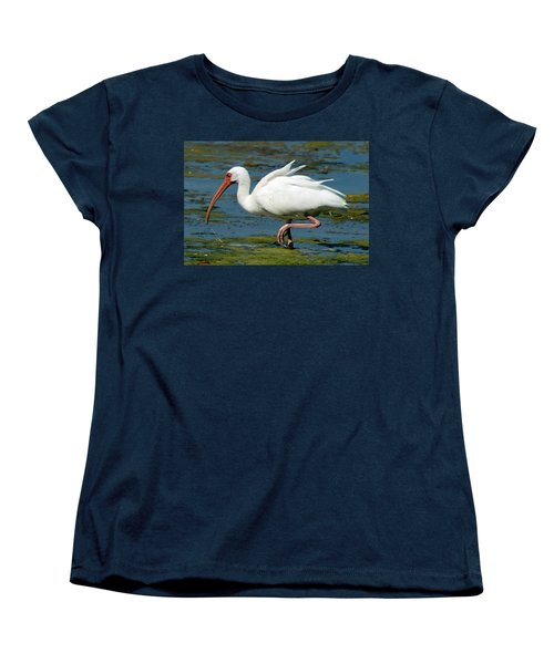 Ibis 2 Women's T-Shirt (Standard Cut) by Joe Faherty