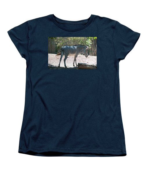 Lincoln Park Zoo In Chicago Women's T-Shirt (Standard Cut) by Carol Ailles