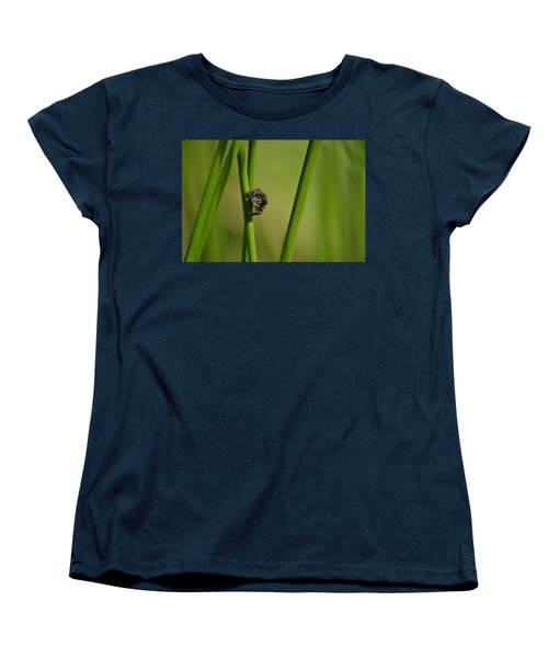 Women's T-Shirt (Standard Cut) featuring the photograph A Jumper In The Grass by JD Grimes