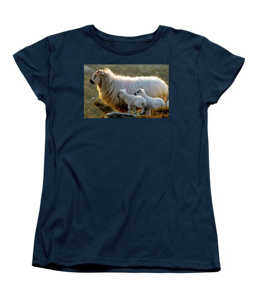 Baby-lambs Women's T-Shirt (Standard Cut) by Barbara Walsh
