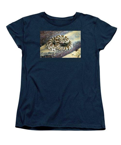 Baby Rattle Women's T-Shirt (Standard Cut)