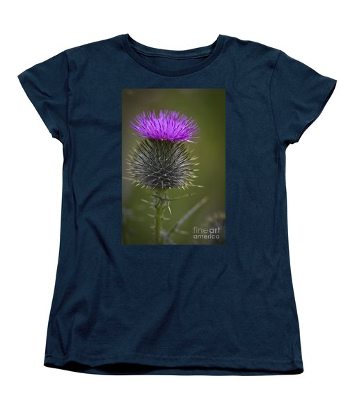 Blooming Thistle Women's T-Shirt (Standard Cut) by Clare Bambers