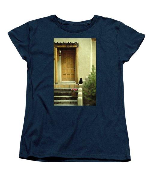 Cat Post Women's T-Shirt (Standard Cut) by Brent L Ander