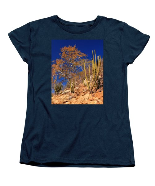 Desert Colors Women's T-Shirt (Standard Cut) by Roupen  Baker