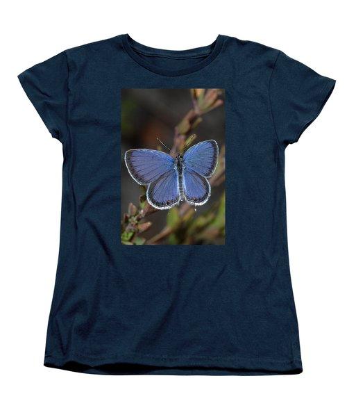 Eastern Tailed Blue Butterfly Women's T-Shirt (Standard Cut) by Daniel Reed