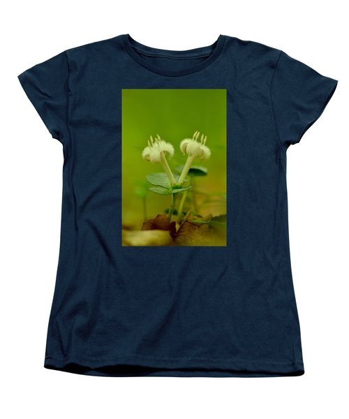 Women's T-Shirt (Standard Cut) featuring the photograph Fuzzy Blooms by JD Grimes
