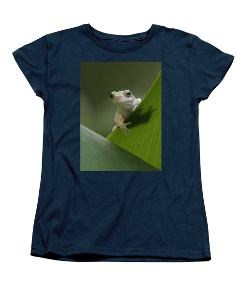 Women's T-Shirt (Standard Cut) featuring the photograph Juvenile Grey Treefrog by Daniel Reed