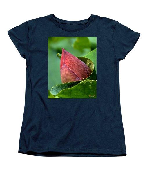 Lotus Bud--bud In A Blanket Dl049 Women's T-Shirt (Standard Cut) by Gerry Gantt