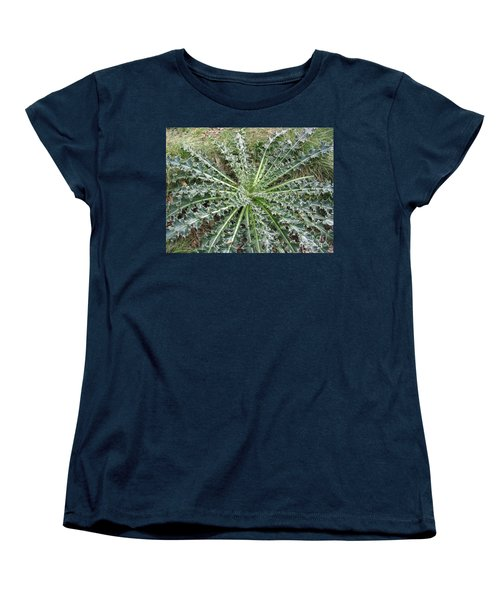 October Thistle Women's T-Shirt (Standard Cut) by Mark Robbins