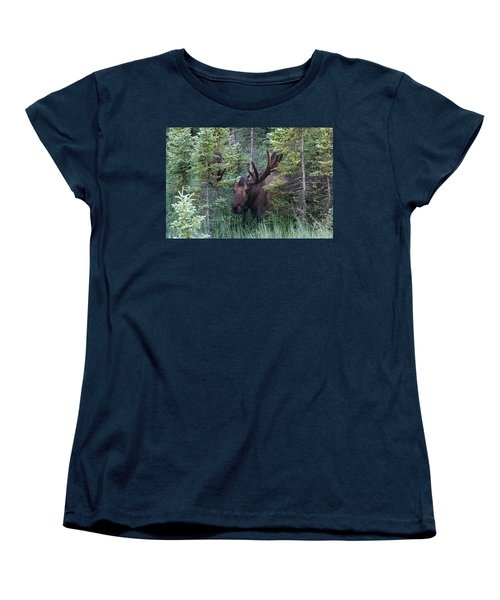 Women's T-Shirt (Standard Cut) featuring the photograph Peeking Through The Spruce by Doug Lloyd