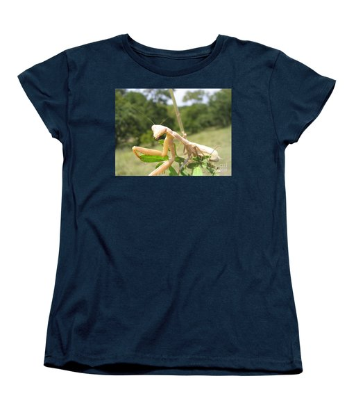 Preying Mantis Women's T-Shirt (Standard Cut) by Mark Robbins