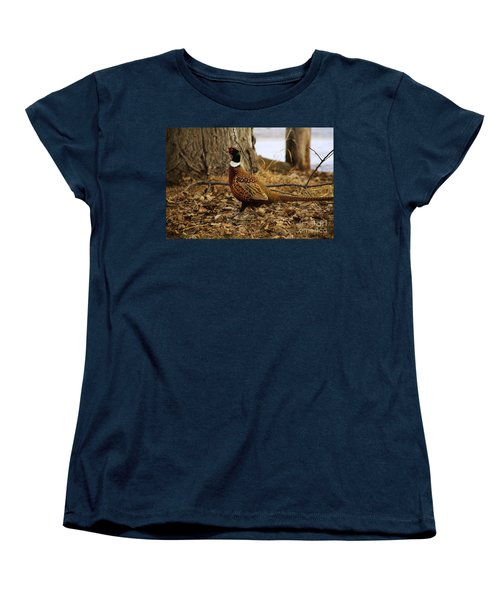 Ring-necked Pheasant Women's T-Shirt (Standard Cut) by Alyce Taylor
