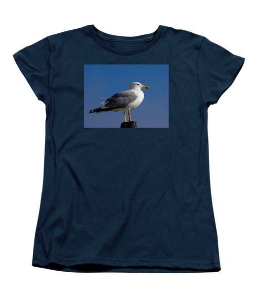 Women's T-Shirt (Standard Cut) featuring the photograph Seagull by David Gleeson