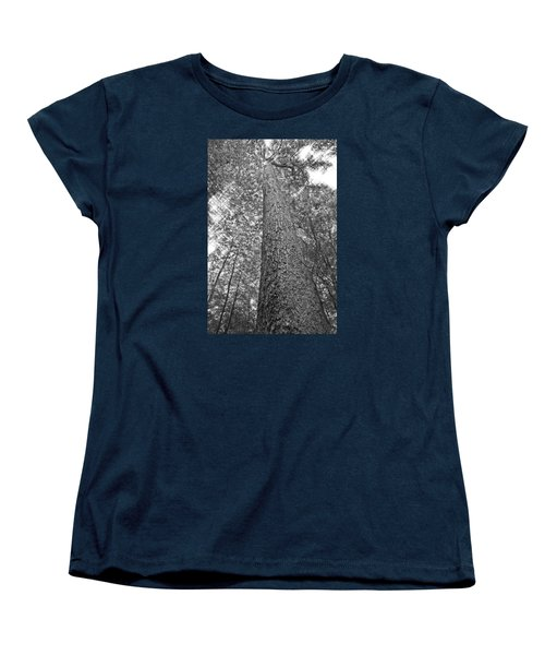 Women's T-Shirt (Standard Cut) featuring the photograph Tall Tree With Sunshine by Susan Leggett