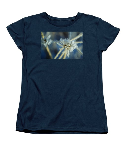 The Beauty Of Winter Women's T-Shirt (Standard Cut) by Ellen Heaverlo