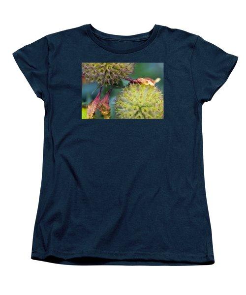 The End Of Summer Women's T-Shirt (Standard Cut) by Susan Stone