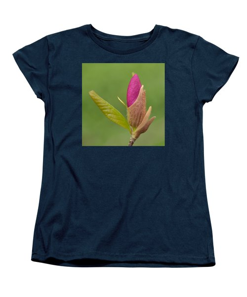 The Unvieling Women's T-Shirt (Standard Cut) by JD Grimes