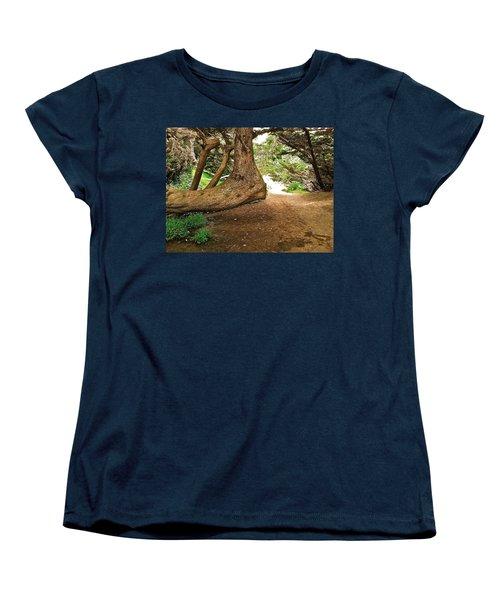 Tree And Trail Women's T-Shirt (Standard Cut) by Bill Owen