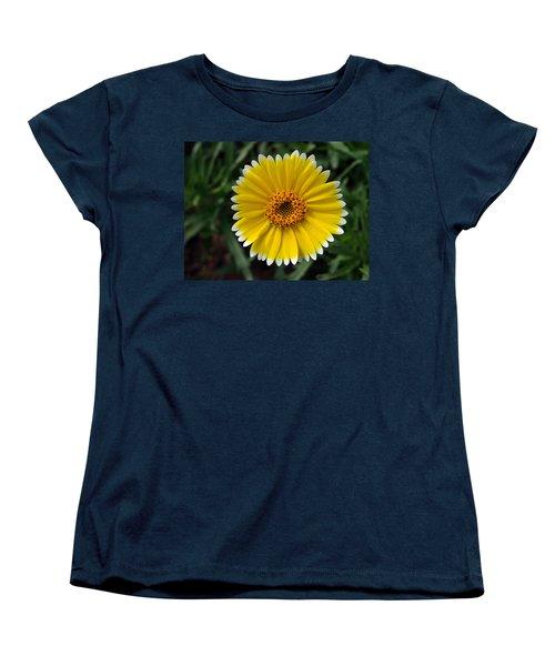 Women's T-Shirt (Standard Cut) featuring the photograph Wake Up by Joe Schofield
