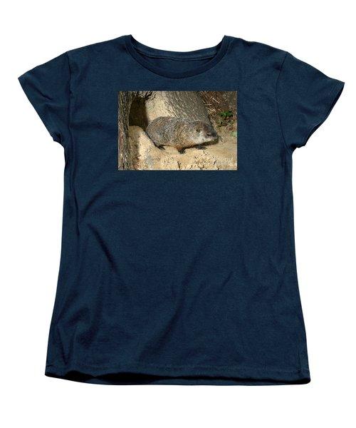 Woodchuck Women's T-Shirt (Standard Cut) by Ted Kinsman