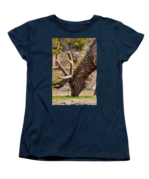 Young One Women's T-Shirt (Standard Cut) by Colleen Coccia