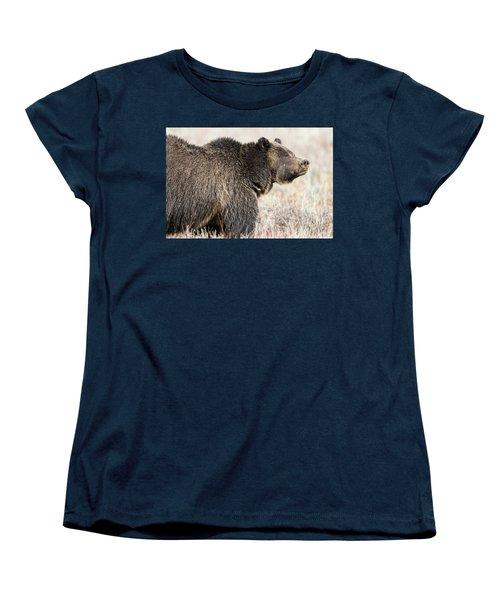 All Seems Beautiful Women's T-Shirt (Standard Cut) by Scott Warner