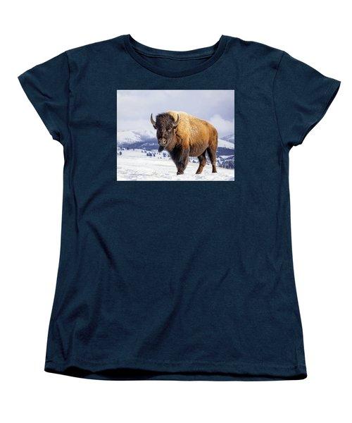 American Legend Women's T-Shirt (Standard Cut) by Jack Bell