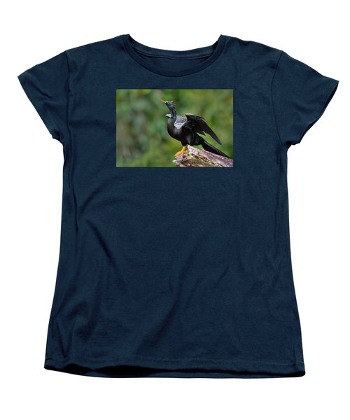 Anhinga Anhinga Anhinga Perching Women's T-Shirt (Standard Cut) by Panoramic Images