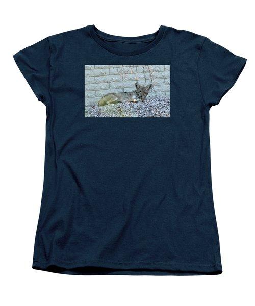 Coyote Women's T-Shirt (Standard Cut) by Anne Rodkin