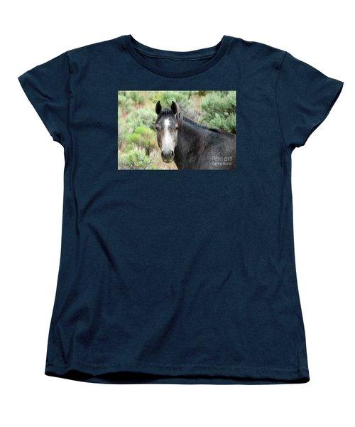 Curious Women's T-Shirt (Standard Cut) by Michele Penner