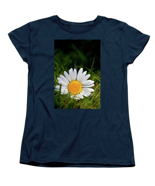Fallen Daisy Women's T-Shirt (Standard Cut) by Scott Holmes