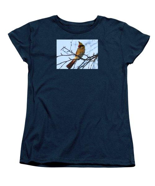Women's T-Shirt (Standard Cut) featuring the photograph Female Northern Cardinal by Ricky L Jones