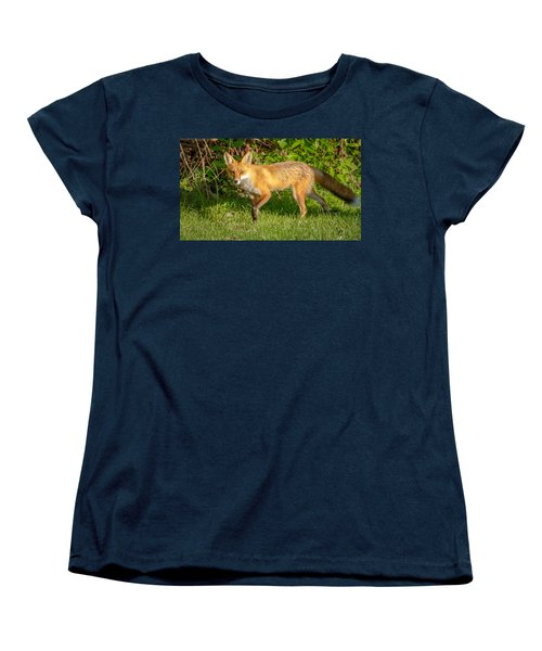 Fox Portrait  Women's T-Shirt (Standard Cut) by Brian Caldwell