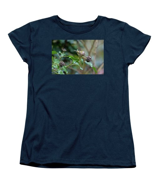 Goldcrest Women's T-Shirt (Standard Cut) by Matt Malloy