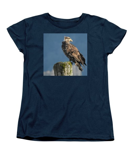 Immature Bald Eagle Women's T-Shirt (Standard Cut) by Brian Chase
