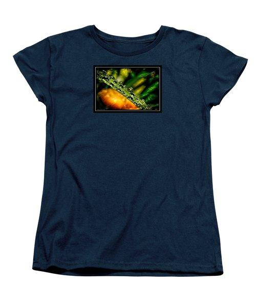 Inspiration Women's T-Shirt (Standard Cut)