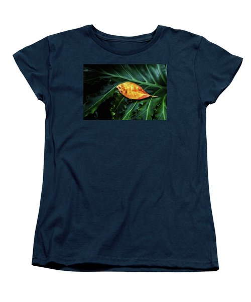 Life Cycle Still Life Women's T-Shirt (Standard Cut) by Tom Mc Nemar