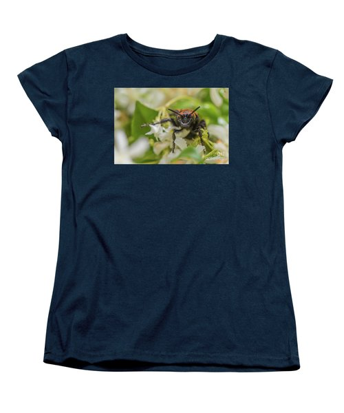 Women's T-Shirt (Standard Cut) featuring the photograph Mammoth Wasp Megascolia Maculata Maculata by Jivko Nakev