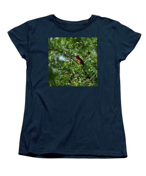 Women's T-Shirt (Standard Cut) featuring the photograph Mr Red by Skip Willits
