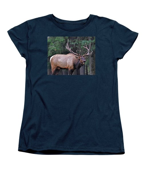 Women's T-Shirt (Standard Cut) featuring the photograph  Royal Roosevelt Bull Elk by Jack Moskovita