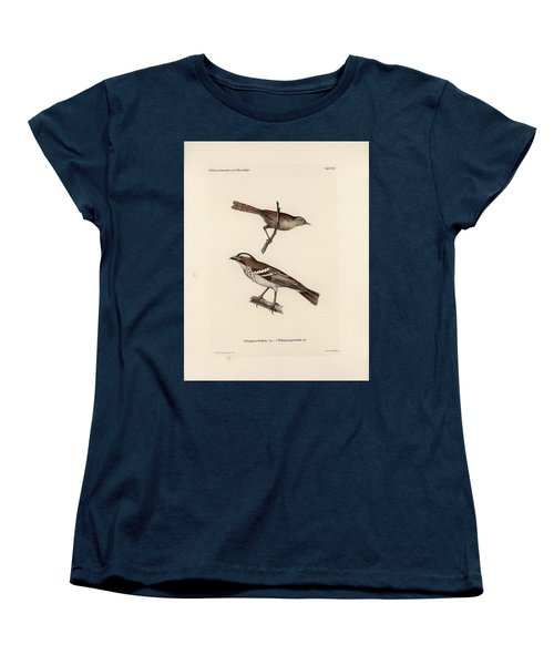 White-browed Sparrow-weaver And Grass Or Bush Warbler Women's T-Shirt (Standard Cut) by J D L Franz Wagner
