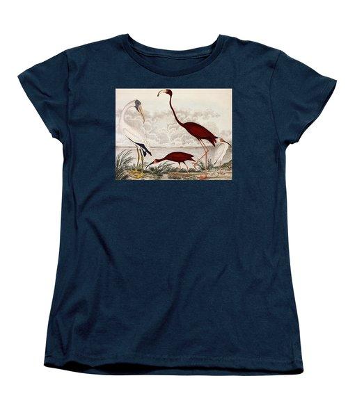 Wood Ibis, Scarlet Flamingo, White Ibis Women's T-Shirt (Standard Cut) by Alexander Wilson