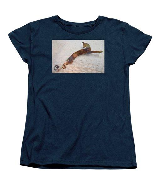1375 Stealth Cat Women's T-Shirt (Standard Cut) by Dianne Brooks