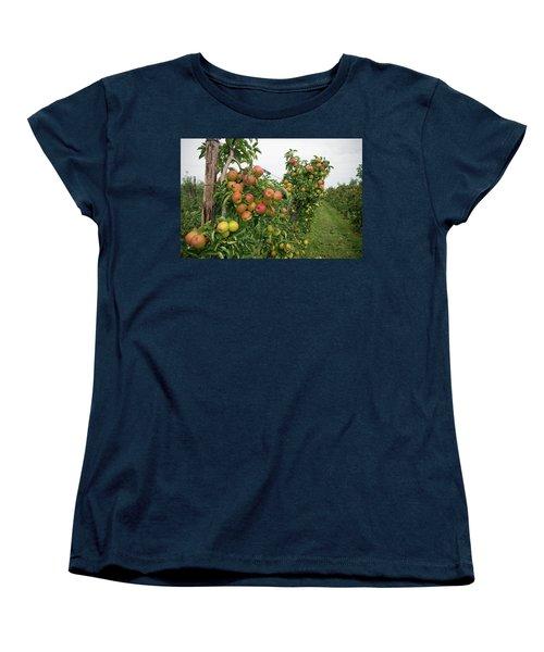 Apple Orchard Women's T-Shirt (Standard Cut) by Hans Engbers